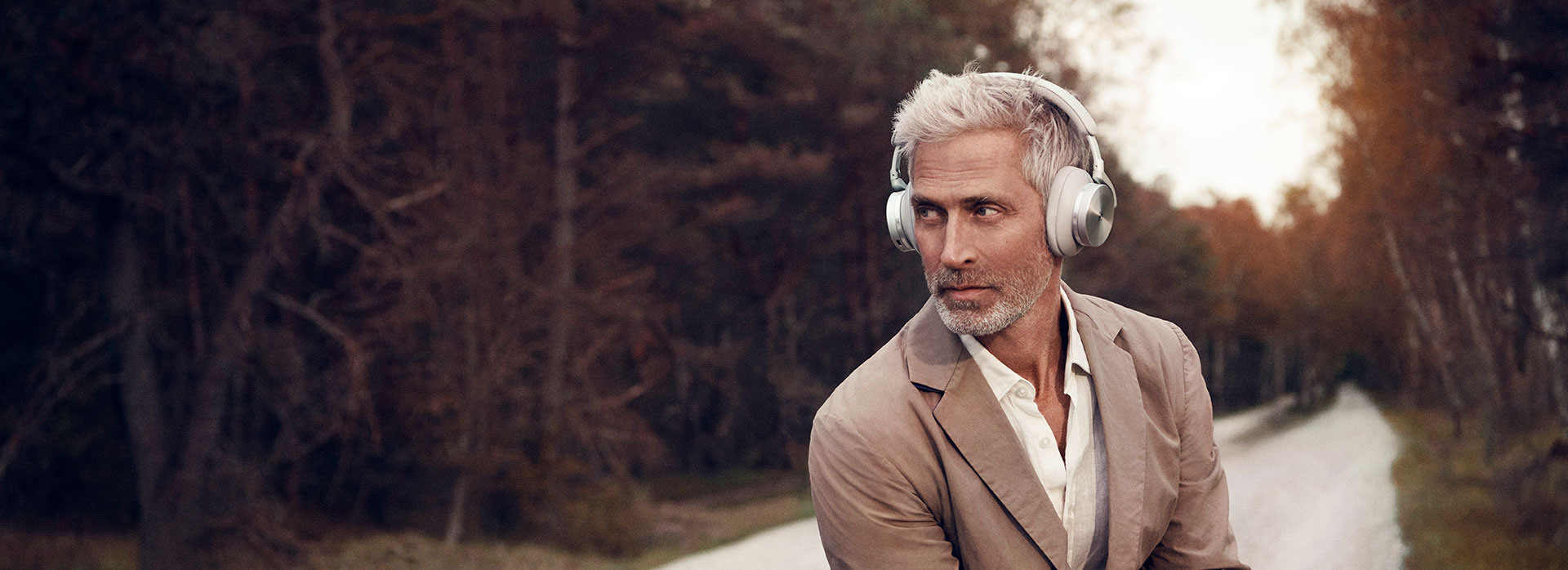 Shop Bang & Olufsen BeoPlay H95 Headphones